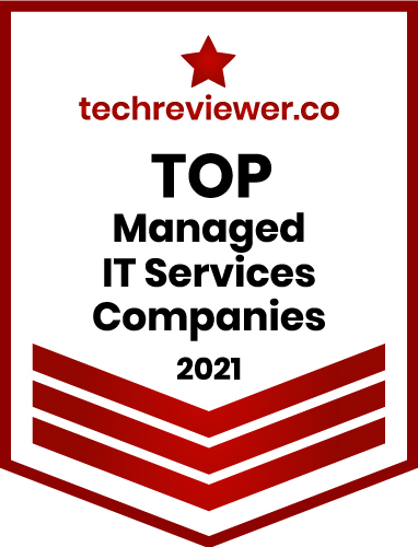 echreviewer Top Managed IT Services Company 2021 T
